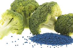 Closeup of broccoli florets and seed Royalty Free Stock Photo