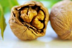 Closeup of broken walnut Royalty Free Stock Image