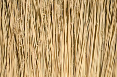 Closeup of broom Royalty Free Stock Image