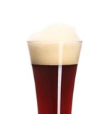 Closeup of brown beer in glass. Stock Images