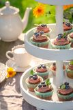 Closeup of brown cupcake made of cream and fresh berries. In sunny garden royalty free stock images