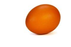 Egg on a white background Royalty Free Stock Photos
