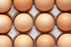 Closeup of brown eggs in carton tray Royalty Free Stock Image