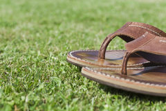Sandals on green grass Stock Image