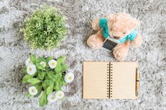 Closeup brown note book diary with line at page with brown pen with artificial plant and bear doll on gray carpet floor textured stock photos