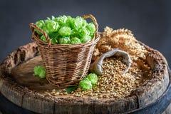 Closeup of brwon malt and green hop. On wooden barrel stock photo