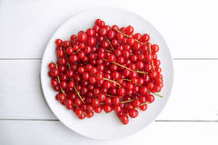Closeup of a bunch of delicate and fresh redcurrants Royalty Free Stock Photo