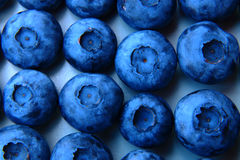 Closeup of a bunch of fresh and delicate blueberries Royalty Free Stock Photography
