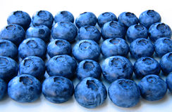 Closeup of a bunch of fresh and delicate blueberries Stock Images