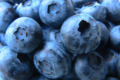 Closeup of a bunch of fresh and delicate blueberries Royalty Free Stock Image