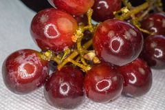 Closeup of bunch of grapes Royalty Free Stock Photos