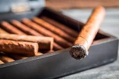 Closeup of burning cigar with smoke Royalty Free Stock Image
