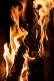 Closeup of burning firewood in fireplace Stock Images