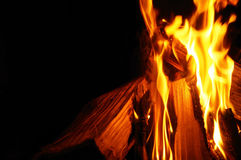 Closeup of Burning Wood and Fire Royalty Free Stock Image
