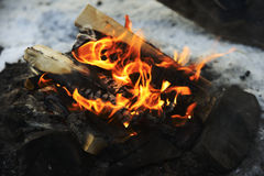 Closeup of burning wood in fire Royalty Free Stock Image