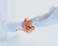 Closeup of a business handshake Stock Image