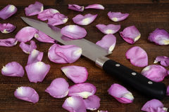 Closeup butcher knife with pink rose petals. On wood Stock Images