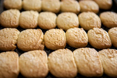 Closeup of butter cookies on baking tray shot at selective focus. Stock Image