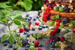 Closeup of cake wild fresh berry fruits in forest Stock Images