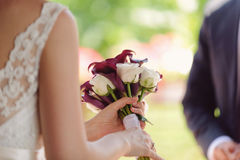Closeup of Calla and Rose Bouquet Stock Images