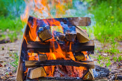 Closeup camp fire Royalty Free Stock Image