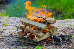 Closeup camp fire. In a forest Stock Images