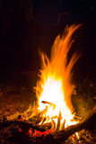 Closeup camp fire Stock Photo