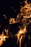 Closeup of a Campfire Royalty Free Stock Photos