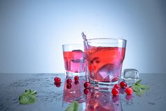 Closeup of a cape cod cocktail or vodka cranberry on a blue background. The closeup of a cape cod cocktail or vodka cranberry on blue studio background Royalty Free Stock Images