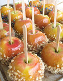 Closeup of caramel apples. With nuts and candy sprinkles Royalty Free Stock Photography