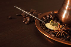 Closeup of cardamom pods, anise and brown sugar in a teaspoon Stock Images