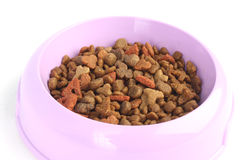 Closeup of cat food in a purple pink bowl isolated on white background Stock Photos