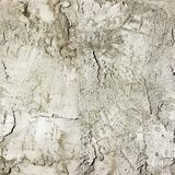 Closeup of cement stucco wall Stock Images