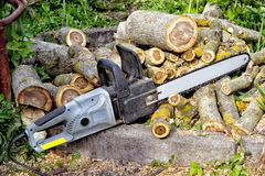 Closeup of chain saw lies on the background of sawn walnut logs. On a Sunny day outdoors Stock Photos
