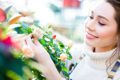 Closeup of charming cheerful woman gardener looking and enjoying roses Royalty Free Stock Image