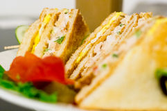 Closeup of cheese vegetable sandwich healthy eating Stock Image