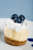 Closeup Cheesecake with fresh blueberries an cream Stock Image