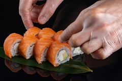 Closeup of chef hands rolling up sushi - focus on the roll. Sushi with salmon, cheese and avocado stock photo