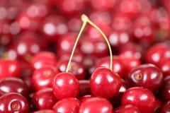 Closeup cherries fruits Stock Image