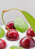 Closeup cherry fruit cream dessert Stock Photos
