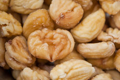 Closeup of chestnut Stock Photo