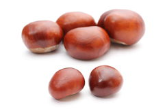 Closeup of chestnut on white  Royalty Free Stock Images