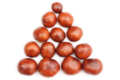 Closeup of chestnut on white background Stock Photo
