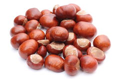 Closeup of chestnut on white background Royalty Free Stock Photo