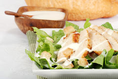 Closeup chicken cesar salad Stock Images