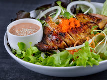 Closeup of chicken salad Stock Image