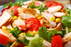 Closeup on chicken saladwith cheese and vegetables Royalty Free Stock Photo
