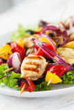 Closeup of chicken skewers or shashlik with grilled vegetables Stock Images