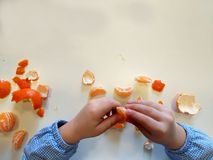 Closeup of child hands peeling fruit wearing school uniform - learning by doing, education, kindergarten, snack time concept stock image