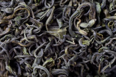 Closeup of chinese tea Stock Images
